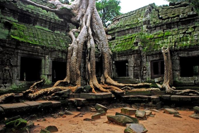 angkor_wat_temple_complex__ta_prohm